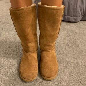 Tall Chestnut Ugg Boots